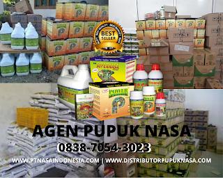 http://www.distributorpupuknasa.com/2020/01/agen-pupuk-nasa-pangkalan-kerinci.html