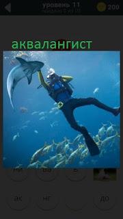470 слов. все просто аквалангист под водой с рыбами играет 11 уровень