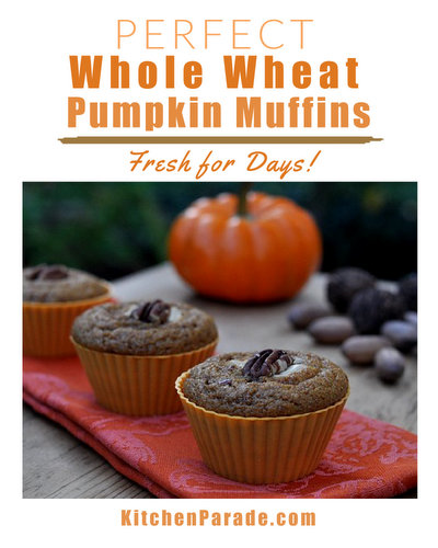 Perfect Whole Wheat Pumpkin Muffins ♥ KitchenParade.com, healthy pumpkin muffins that stay fresh for days. Moist and spicy with great texture.