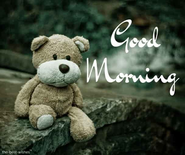 101 Cute Good Morning Teddy Bear Images Best Collection