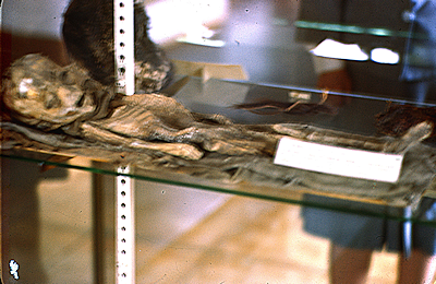 Roswell Alien Slides Exposed As Mummy