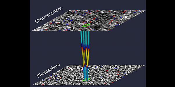 Illustration of the Alfvén pulse connection between plasma swirls observed in the solar photosphere and chromosphere. The photospheric and chromospheric images were recorded with the Hinode satellite, while coloured lines between are visualizing the presence of magnetic field lines from our realistic numerical simulations using the Sheffield Advanced Code (SAC). Red and blue curves are swirls detected by the Automated Swirl Detection Algorithm (ASDA) developed by us. Credits: Liu et al. Nature Communications, 10:3504, 2019