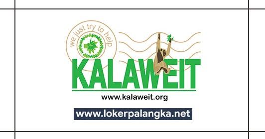 Lowongan Kerja Yayasan Kalaweit Indonesia 2019 - Lowongan ...