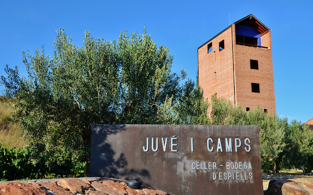 Juve Y Camps Brut Nature Gran Reservacava Review