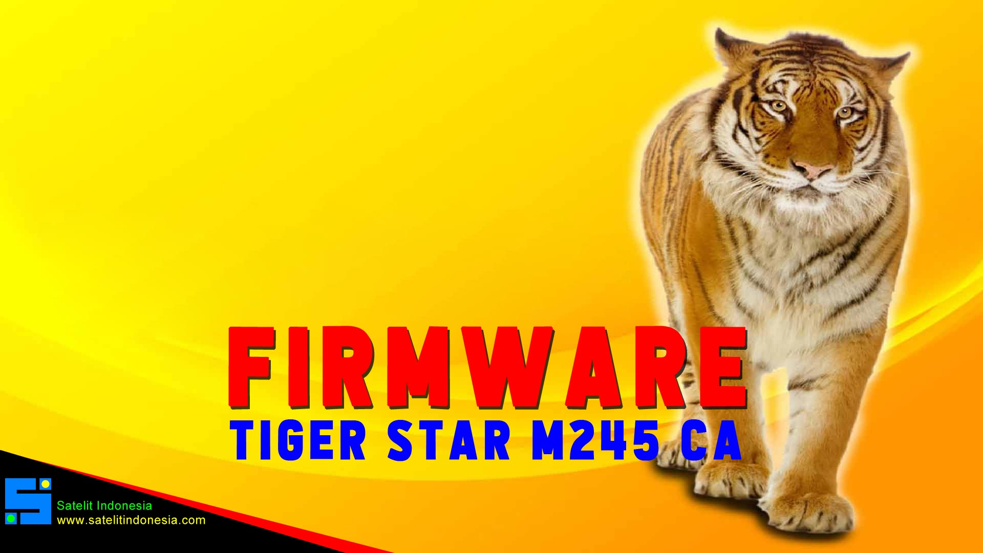 Software Tiger Star M245 CA Firmware Receiver New Update