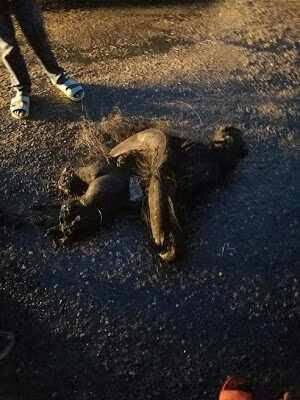 Another Suspected Member Of Badoo Cult Group Lynched In Ipakodo, Ikorodu (Graphic Photos)