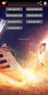 تحميل أفضل تطبيق لمشاهدة المباريات مباشرة bein sports مجانا على أجهزة الاندرويد