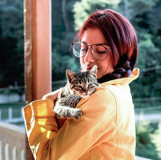 Can cats pick up human emotions and react to them?