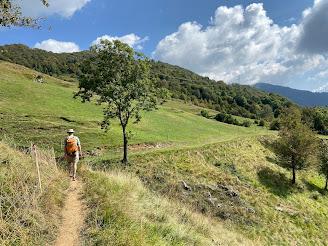 Heading north toward Selvino; on trail 533 above Castello.