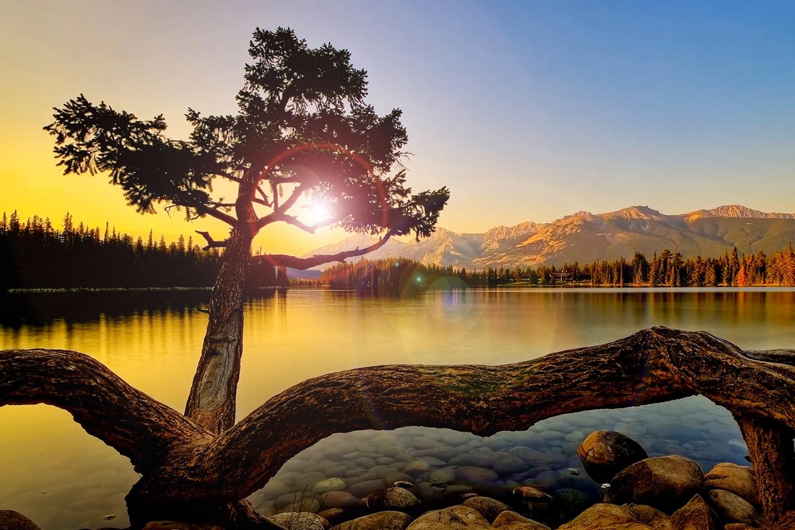 Beautiful HD Desktop Wallpaper | HD Wallpaper | HD Screensaver | HD Background