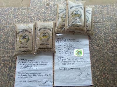 Benih Padi yang dibeli   Pak THORIQ FIRDAUS Jombang, Jatim.   (Sebelum Packing)