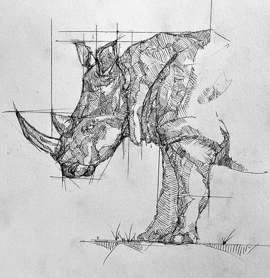 12-Rhino-Brendan-www-designstack-co