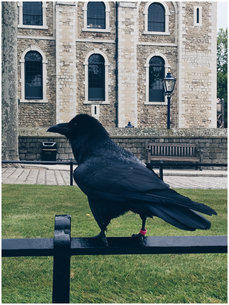 travel diary, london, tower of london