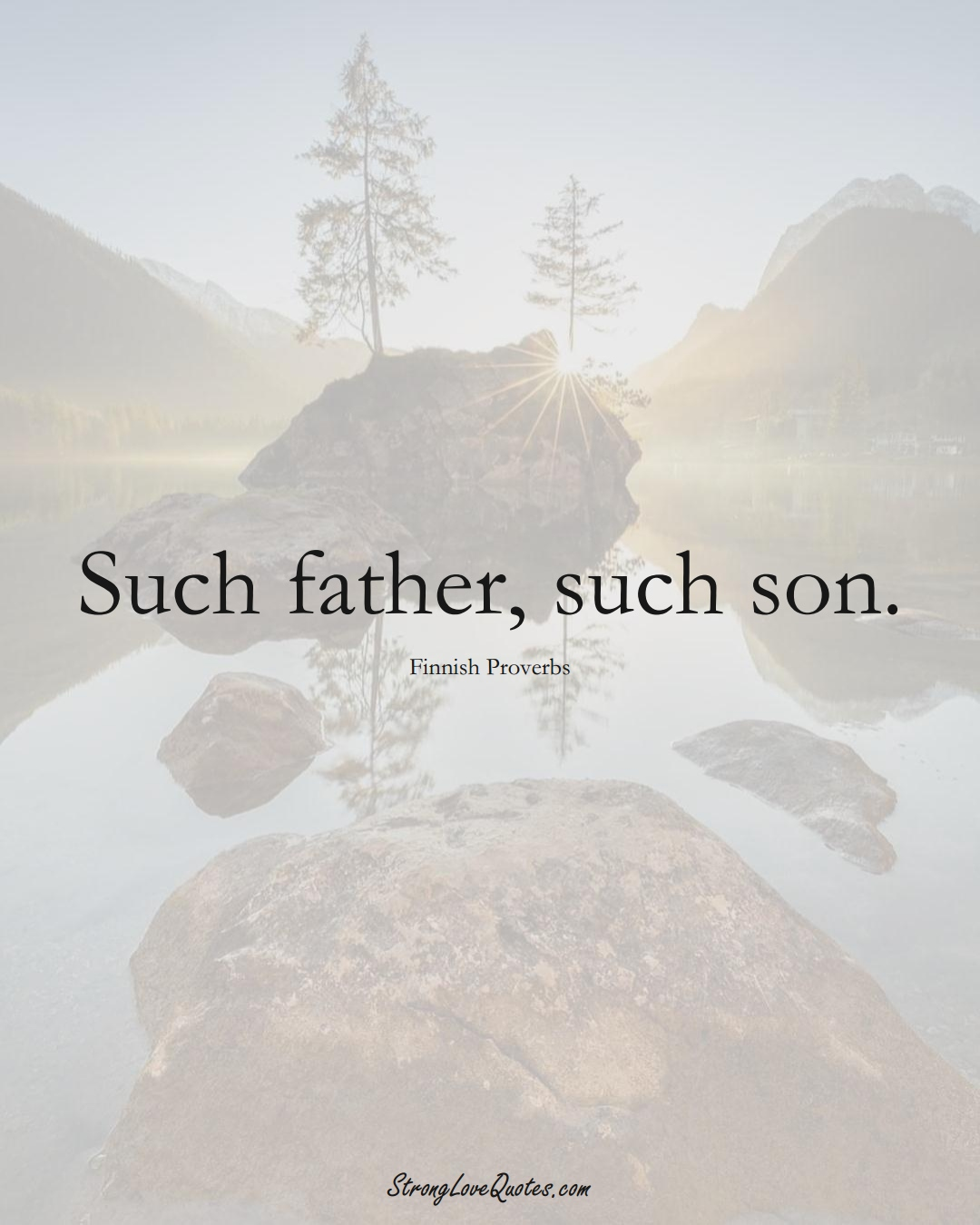 Such father, such son. (Finnish Sayings);  #EuropeanSayings