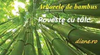 Poveste cu tâlc - Arborele de bambus