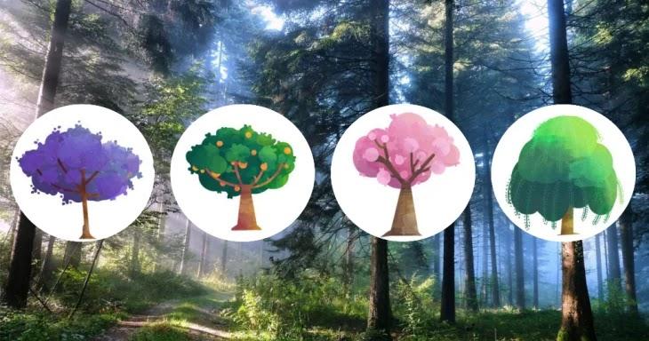 Тест: выберите дерево и узнайте кто вы – оптимист или пессимист Фото Тест необычное взгляд
