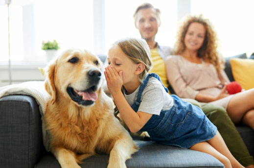 Jakiego psa wybrać, gdy w domu są małe dzieci?