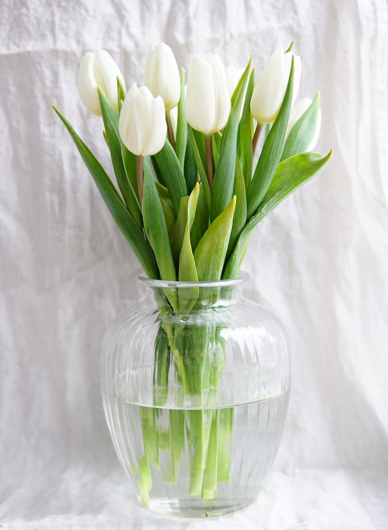 sesonkikukka, kukkakimppu, tulppaani