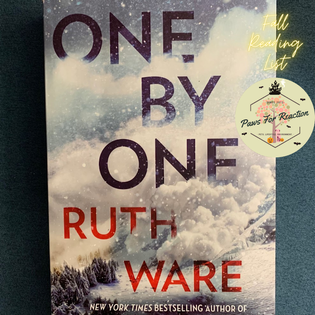 Book review: Ruth Ware's books keep climbing up the bestseller list, One By One