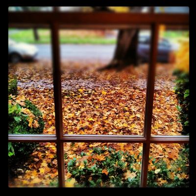 Hello Autumn www.twenty8divine.com