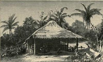 A journey in Brazil  1867 Travel