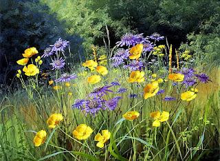 flores-naturales-campos