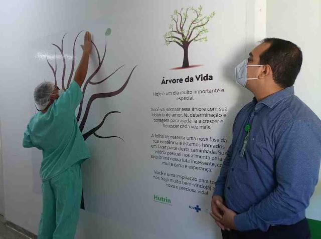 """Hospitais em GO lançam projeto """"Árvore da Vida"""" para celebrar altas de pacientes recuperados da Covid-19"""