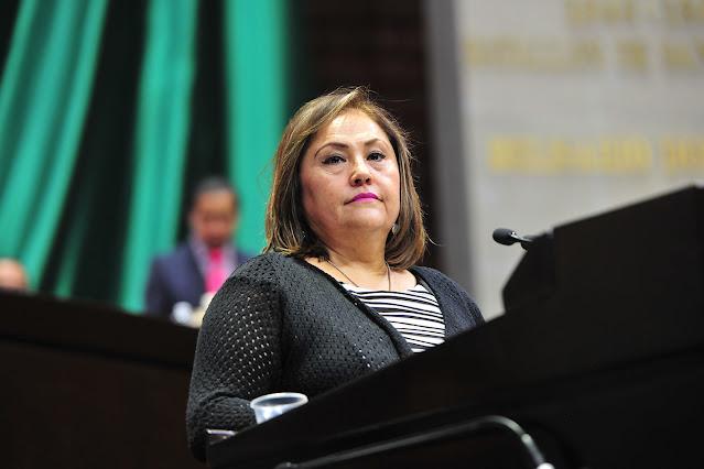 Solicitará Silvia Garza conformación de comisión investigadora para esclarecer mega apagón de CFE