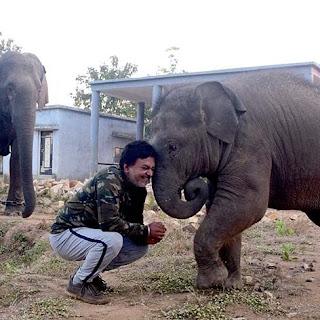 Elephant Whisperer, Anand Shinde