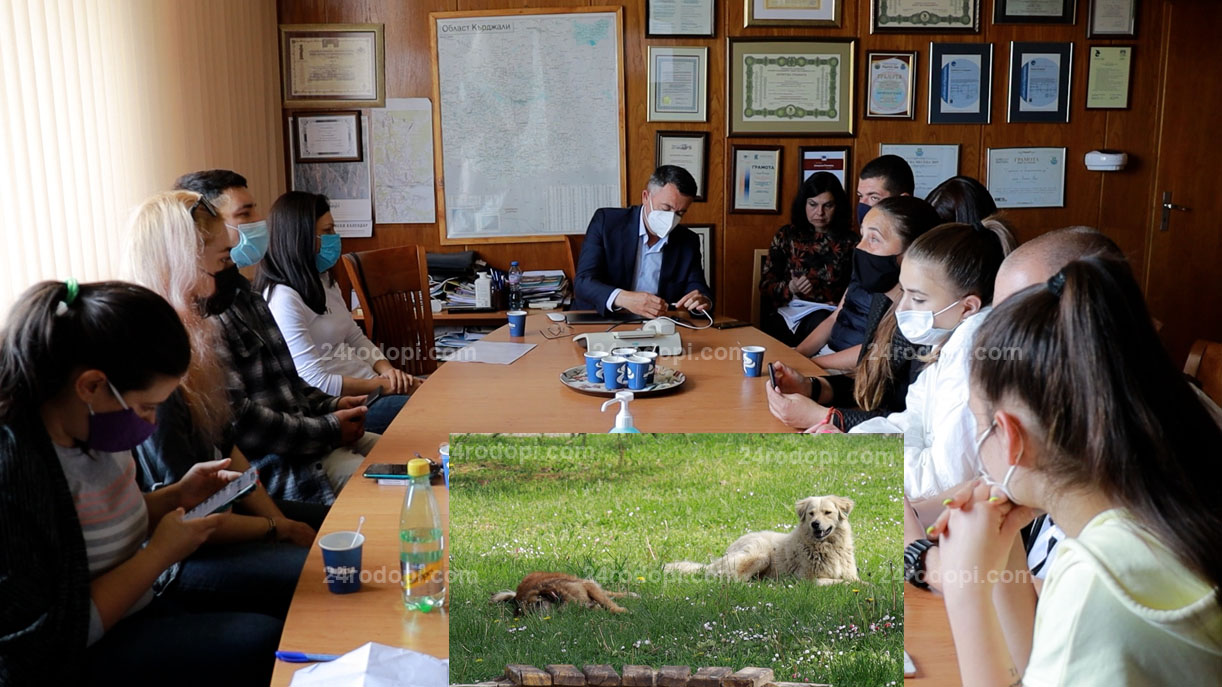ВИДЕО репортаж: Кучешкият проблем: Безплатни ваучери за