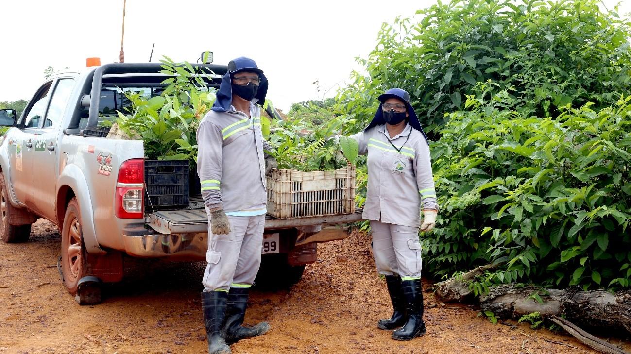Conheça a força da mulher paraense na recuperação de áreas mineradas em Juruti, Pará