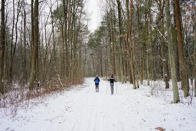 okolice Truskawia