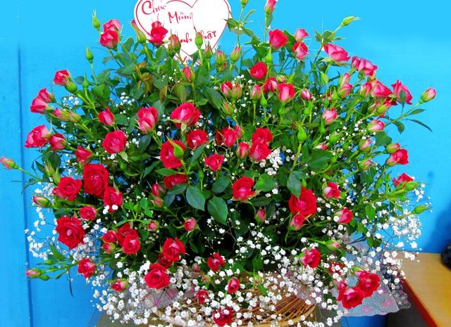 Bó hoa hồng đỏ đẹp nhất thế giới 6