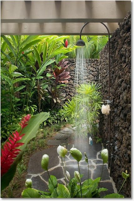 LA FOTO DEL DIA: La ducha más bella 1