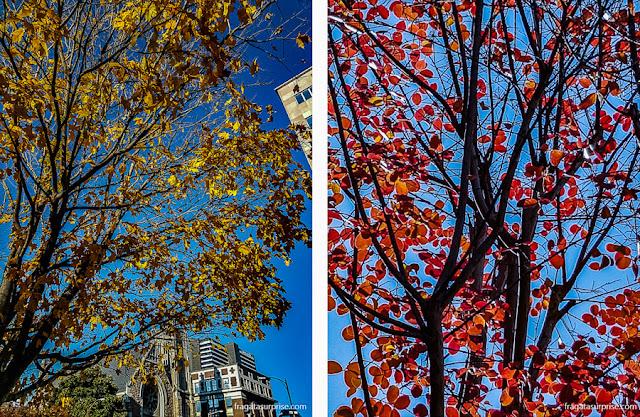 Outono em Nashville