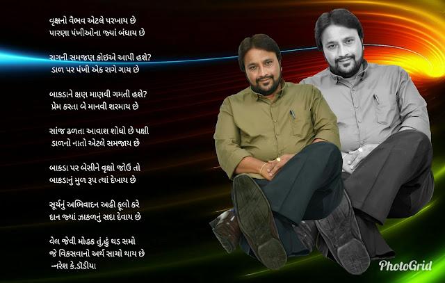 वृक्षनो वैभव एटले परखाय छे  Gujarati Gazal By Naresh K. Dodia