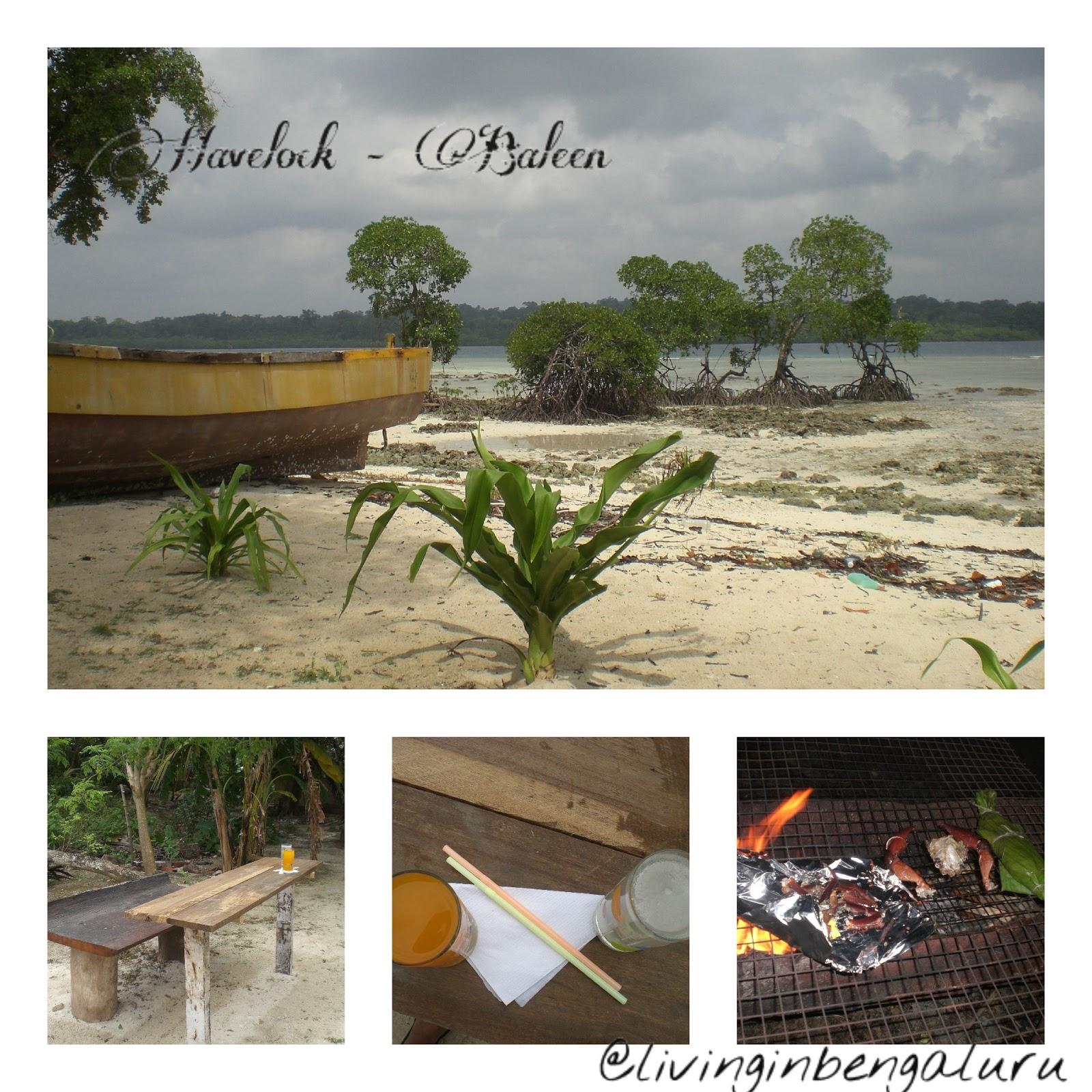 Havelock Island: Havelock Island(Andaman And Nicobar Island