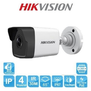 IP Camera HIKVISION DS-2CD1043G0E-I