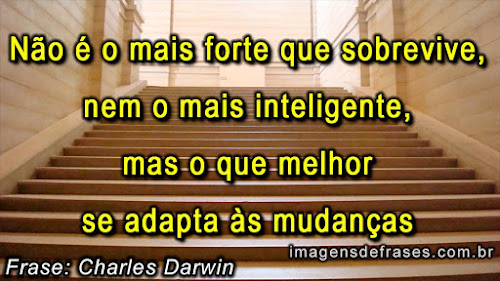 Frases Charles Darwin - Teoria da Evolução das Espécies