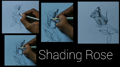 How to shade rose, how to draw rose step by step tutorial ,drawing of rose ,rose drawing ,drawing for beginners ,step by step tutorial of Rose , pencils drawing