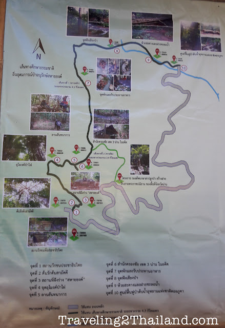 Hiking trail along route 1257 in Nan - Thailand