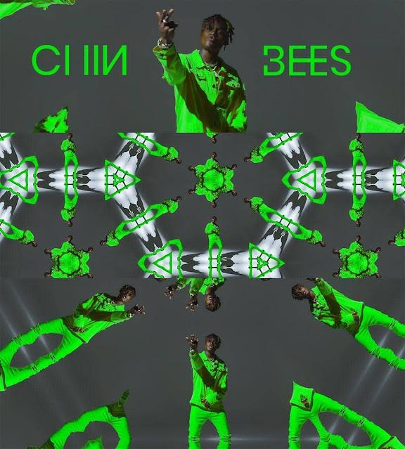 Chin bees - Nasebenza