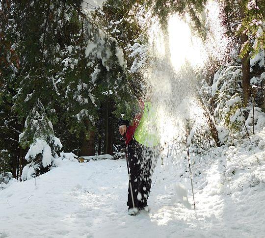 Śnieżny atak.