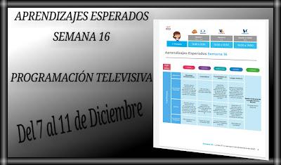 APRENDIZAJES ESPERADOS Y PROGRAMACIÓN TELEVISIVA-SEMANA 16 - DEL 7 AL 11 DE DICIEMBRE