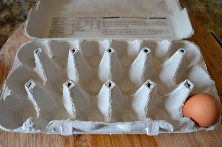 A single egg in an egg carton.