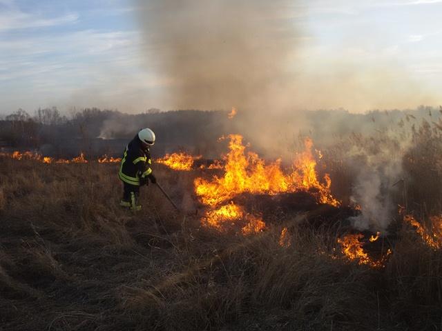 В Івано-Франківській області, не зважаючи на усі застереження, люди продовжують спалювати суху траву