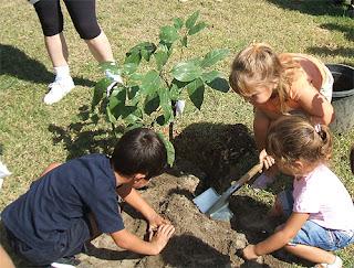 Niños plantando árboles