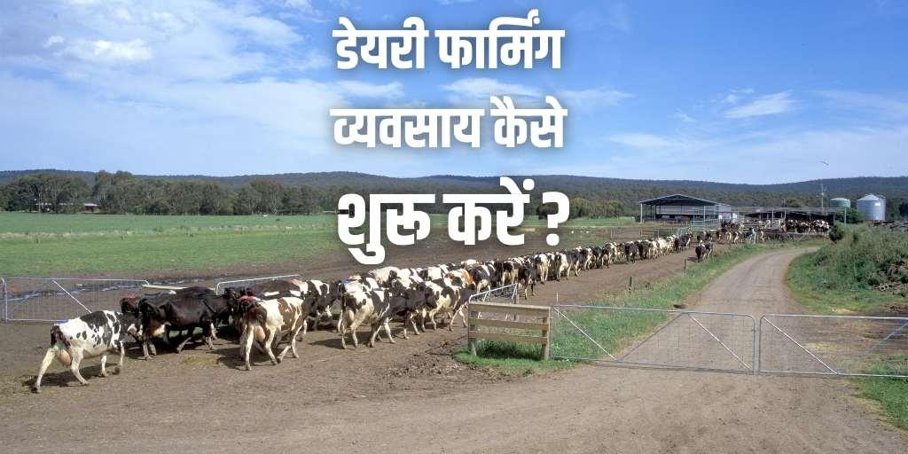 How to Start Dairy Farming In Hindi डेअरी इंडस्ट्रीचे सर्वात मोठे  Dairy Industryexpo