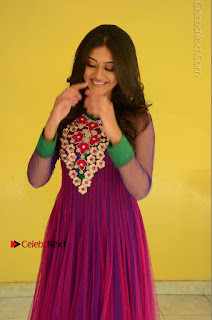 Actress Pooja Jhaveri Latest Stills in Purple Salwar Kameezt at Dwaraka Success Meet  0106.JPG