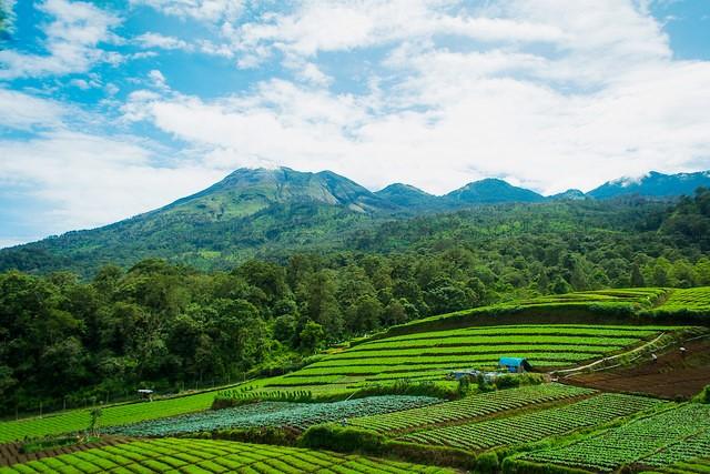 Wisata Hot Spring Cangar Batu Jawa Timur